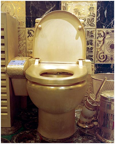 Toilets-of-the-World-by-Sian-James-14